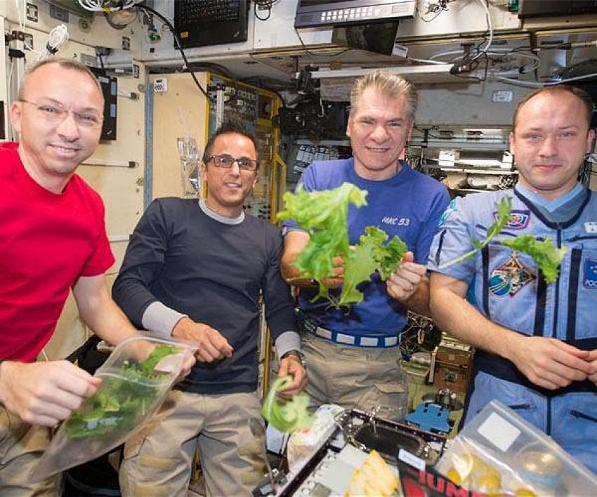 Gymnasieelever lär Nasa att odla i rymden