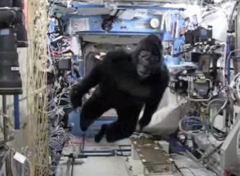 Astronauten Scott Kelly överraskar kollegorna på rymdstationen utklädd till gorilla.