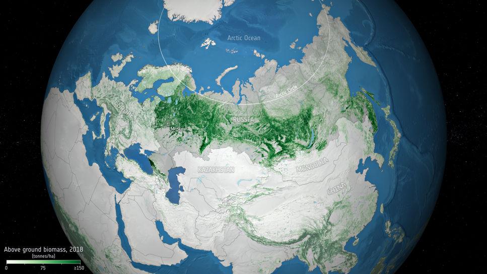 Skogdata från satellit