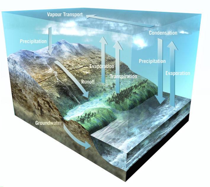En illustration av vattenkretsloppet