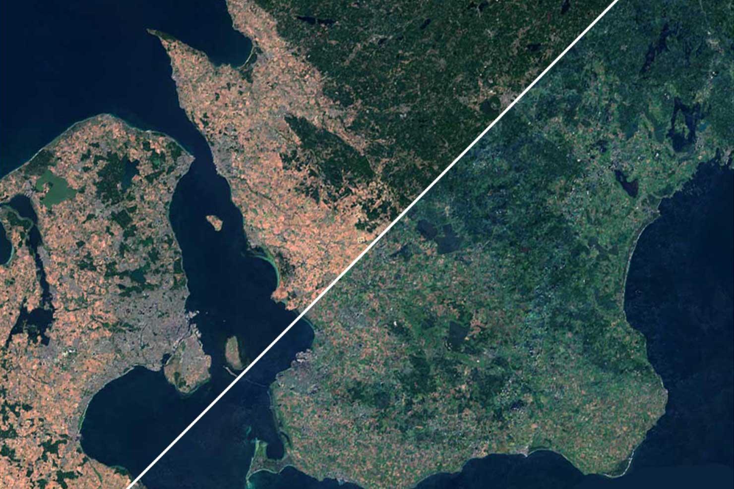 Så ser Sverige ut efter torkan